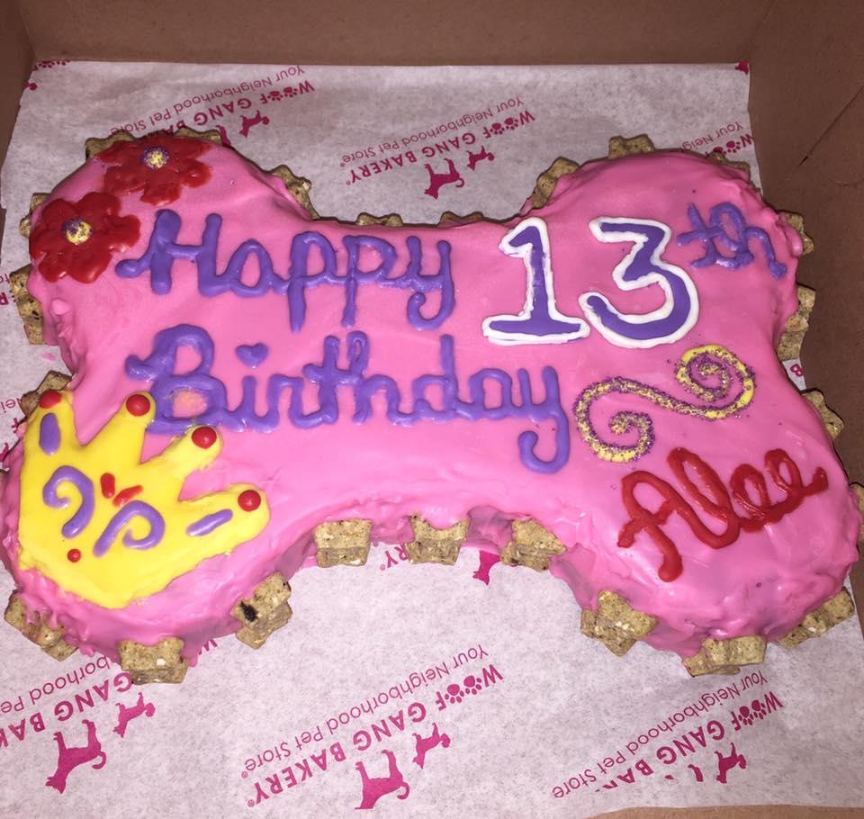 Dog Treats & Birthday Cakes